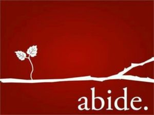 Abiding Faith